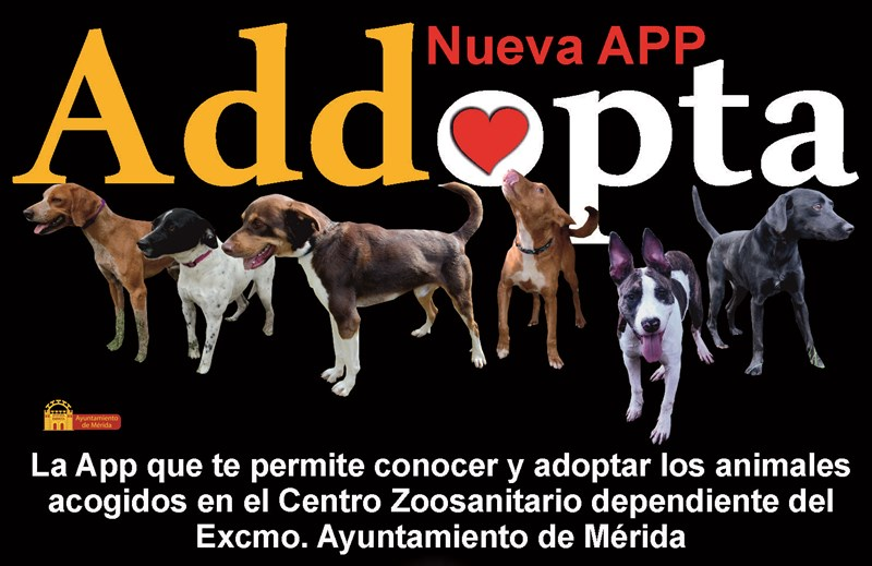Mérida cuenta ya con una app para posibilitar la adopción de animales del Centro Zoosanitario