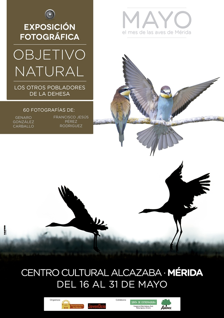 expo-aves-cartel