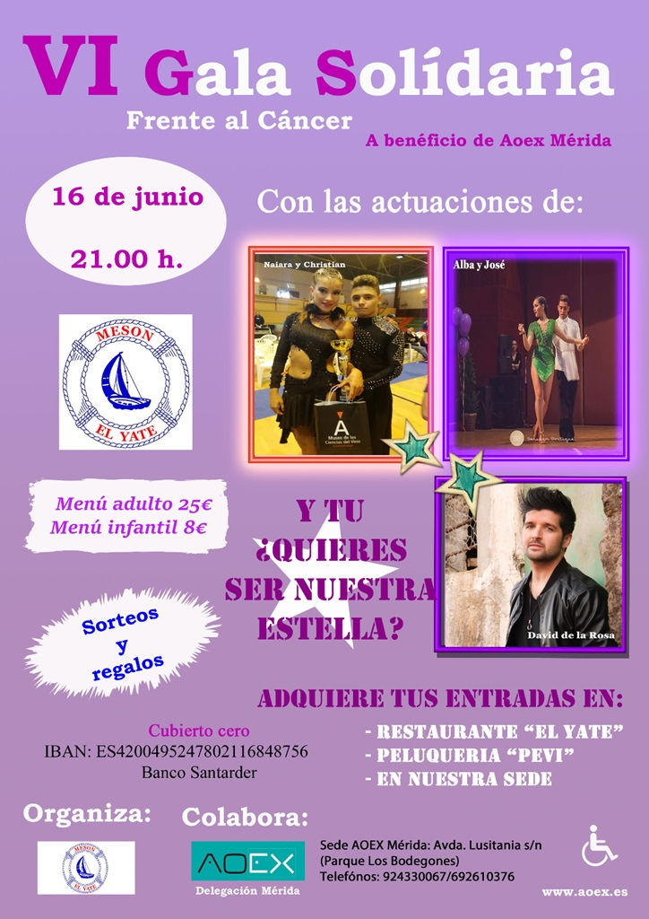 gala-solidaria-aoex-cartel