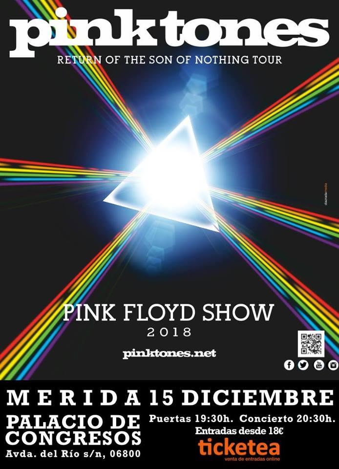 pink-tones-merida-cartel