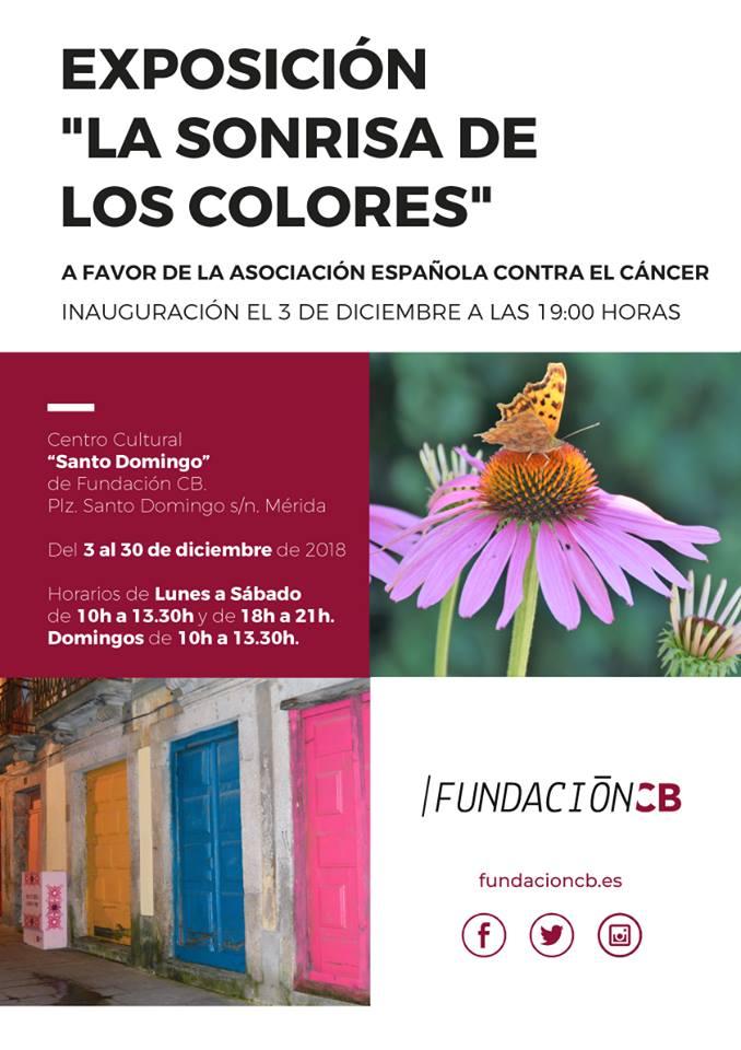 expo-sonrisa-colores-cartel