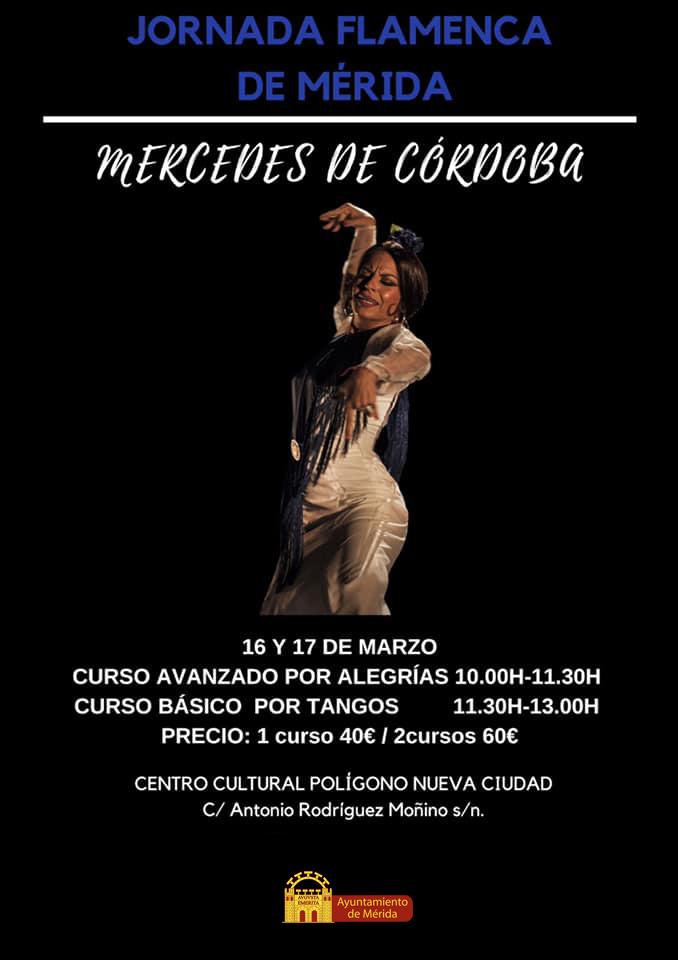 flamenco01