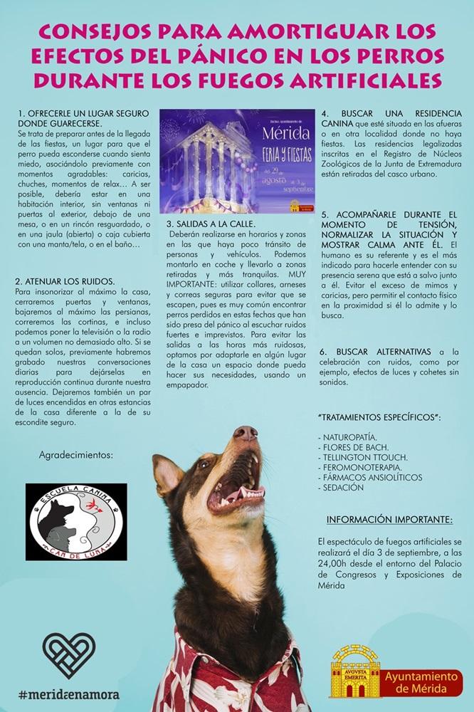 Campaña de concienciación para evitar los ruidos para los animales de compañía