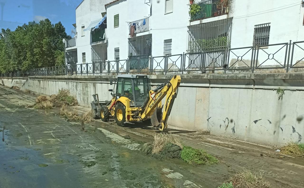 El Ayuntamiento realiza esta semana las tareas de limpieza en el cauce del Río Albarregas