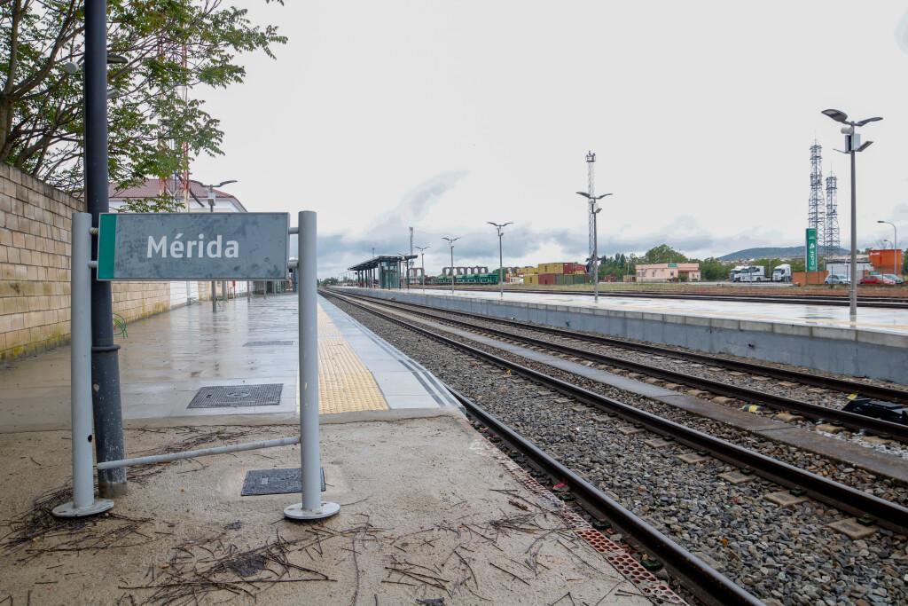 trenes mercancía ADIF (8) (1)