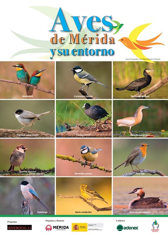 Mes de las Aves Cartel Aves Adenex_page-0001