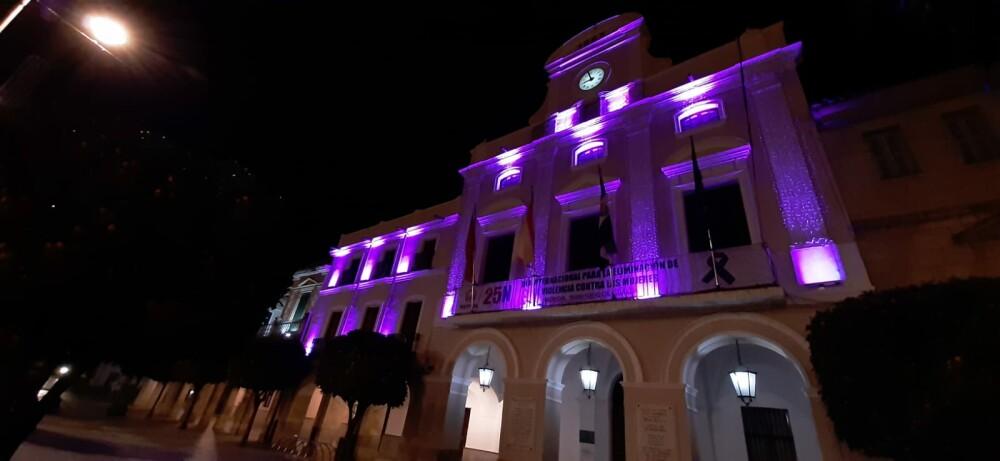 La fachada del Ayuntamiento, la fuente de la Plaza de España y varios monumentos se iluminan el miércoles en color morado por el Día Internacional del Síndrome de Dravet
