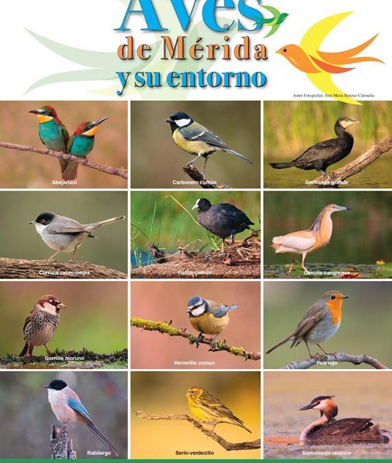 """Comienzan las actividades del """"Mes de las Aves"""" con un observatorio en el Puente Romano y un taller de ornitología"""