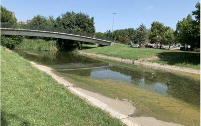 El Ayuntamiento publica el contrato para la limpieza del cauce del río Albarregas
