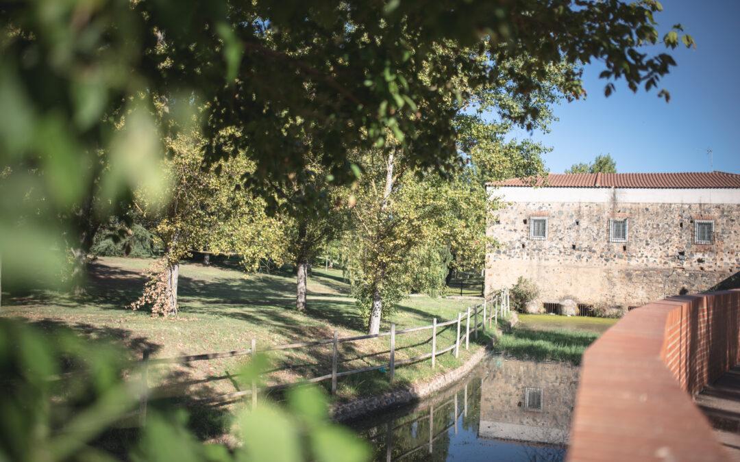 El Ayuntamiento publica la licitación del contrato para la creación de dos áreas biosaludables en los parques del Guadiana y Albarregas